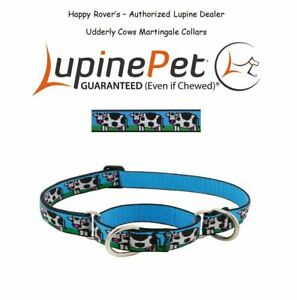 Lupine Combo Martingale Training LIMITED RUN Dog Collar - 1 - Udderly Cows