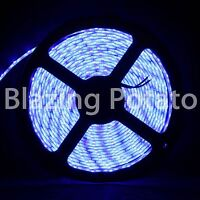 LumenWave 5M 5630 IP65 Waterproof Flexible 300 LED Strip Lights -White PCB- Blue