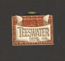 Teeswater Ontario Metal Pinback Pin - Good