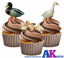 Farm Animals Duck Ducklings Birthday Party 12 CupCake Toppers Edible Decorations
