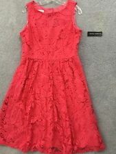 Donna Ricco - Fuchsia Pink Lace Illusion Fit and Flare Dress - 12 NWT