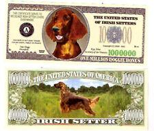 Dollarschein Irish Setter