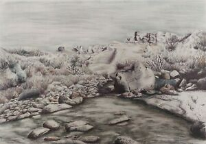 A large one of a kind landscape ink drawing with intergrated tinted charcoal.