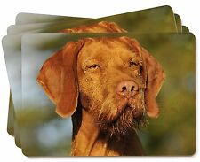 Hungarian Vizsla Wirehaired Dog Picture Placemats in Gift Box, AD-HWV1P