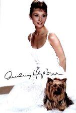 Audrey Hepburn - Repro / Druck - F 17 UH