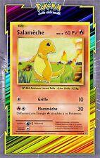 🌈Salamèche - XY12:Evolutions - 9/108 - Carte Pokemon Neuve Française