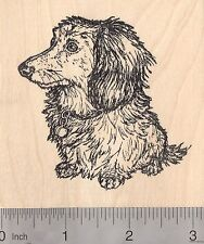 Long-Haired Dachshund Rubber Stamp, Dog L50305 Wm