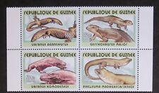 Varanus agantus u.a. Guinea 2002 Zd