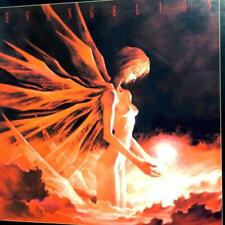 Neon Genesis Evangelion Movie Box First Limited Edition VHS very rare from JP