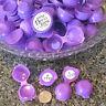 12 Tiny Sample Purple Empty Plastic Flip Top 7713 Powder Herb Container DecoJars