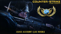 Counter-Strike: Global offesnive (CS:GO) 5,000HRS STEAM [FAST DELIVERY!]