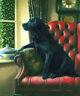 Nigel Hemming HOMEWARD BOUND Black Labrador Labs Gun Dogs, Signed Art Print