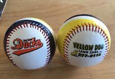 Long Island Ducks 2015 Baseball SGA From Ball Day With Free Shipping