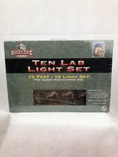 Ten Lab Labrador Dog Duck 10 Light Set Hunting Camping RV Camp 10' IndoorOutdoor