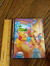 Disney Baby Album photo Book Winnie the pooh 4x6