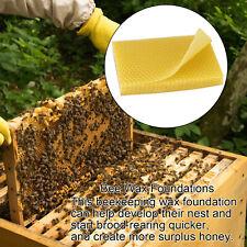 10PCS Beeswax Foundation Bees Hive Wax Frame Base Sheet Bee Comb Honey Frames
