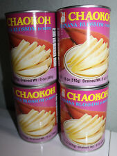 CHAOKOH BANANA BLOSSOM IN BRINE PACK OF 4 CANS 18 OZ PER CAN Drained Wt. 9 Oz.