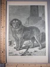Rare Antique Original VTG Here Friedreich's Berglund Moulin Engraving Art Print