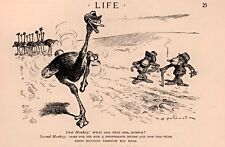 1924  CARTOON SULLIVANT  ART MONKEYS OSTRICH PHONOGRAPH TUNE IN HIS HEAD