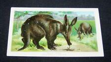 1890 TRADE CARD-#39 ARBUCKLE COFFEE-AARD VARK-ANIMAL SERIES-LIST ON BACK