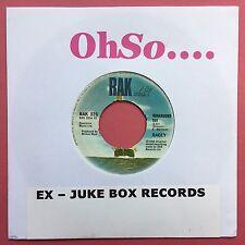 Racey - Runaround Sue / Hold Me Close - RAK 325 - JUKEBOX READY - VG+ Condition