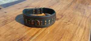 """LEATHER DOG COLLAR STUDDED 3"""" WIDE WITH STAFFY KNOT BROWN HANDMADE Large Breed"""