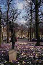 650001 Springtime In The Lange Voorhout Area Netherlands A4 Photo Print