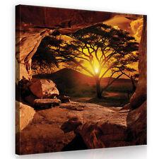 CANVAS Wandbild Leinwandbild Bild Natur Afrika Sonne Baum Ausblick 3FX10260O2