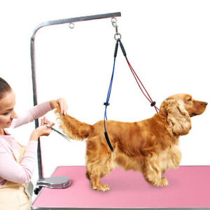 Pet Grooming Cable Loop Haunch Holder Restraint Table for Small Medium Dogs Cat