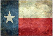 Texas State Flag Poster Print, 19x13