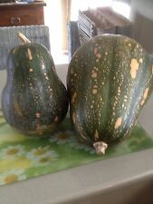 Gramma Pumpkin Seeds. Heirloom Variety. No Post To Tas Or WA. Qty 25