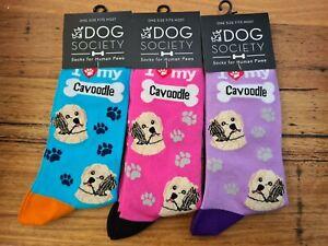 Cavoodle socks 80% cotton Animal Dog One size Women Men slipper Pet