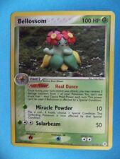 Pokémon: cartas sueltas