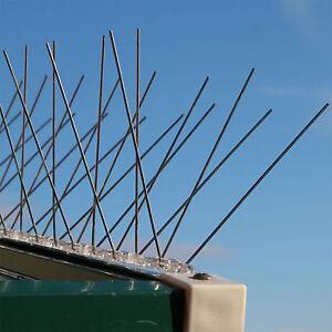 Taubenabwehr Spikes EDELSTAHL Vogelabwehr Taubenspikes Vogelschreck Vogelschutz