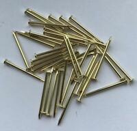 25  BRASS PLATED HARDENED STEEL PINS FOR PICTURE HOOKS ETC 25mm Long x 1.5mm Dia