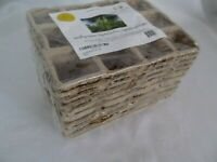 120 Cells Biodegradable Paper Peat Pots Seed Starters Garden Planters 10 Trays