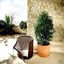 BioGreen Topfschutz Thermoplus Winterschutz KS 50 Thermoschutz Pflanzen