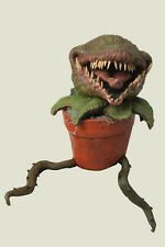 Little Shop Of Horrors Man Eating Plant 061BN10