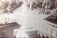 Victorian Carte De Visite CDV: Mystery Island Bridge: Frozen Icicles
