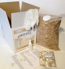 Mushroom Grow Kit - Blue/Grey Oyster