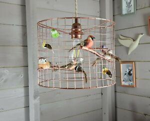 Copper Garden Bird Birdcage Cage Shade Chandelier Light Lightshade Aviary Art