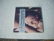STEVE WINWOOD  -  BACK IN THE HIGH LIFE  Japan cd mini LP