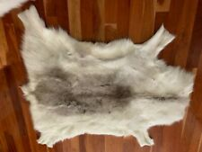 reindeer fur best for wall hanging sheds alot spot on underside