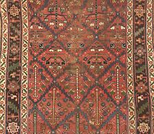 Tremendous Tribal - 1900s Antique Kurdish Rug - Gallery Carpet - 5.11 x 11.11