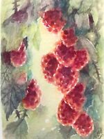 ACEO Original Painting Raspberries Sunshine Art Listed By Artist USA Watercolor
