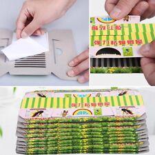 10pc Cockroach Roach House Glue Traps Killer Medicine Unharmed Non-Toxic w/
