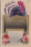 THANKSGIVING Greetings Holiday Postcard c1910 GOLD Turkey Airbrush Scene 54