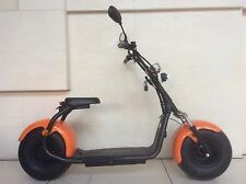 Monsterbike 1000W  mit Straßenzulassung  Händleranfragen erwünscht....