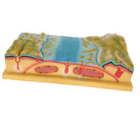 Plastic Plate Tectonics Earth Crust Model Kit for Kids Science Learning Toy
