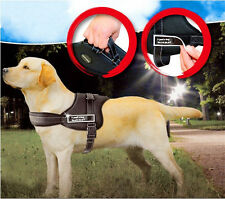 Reflective Safety Dog Harness label patches SERVICE DOG Vest Padded IN TRAINING